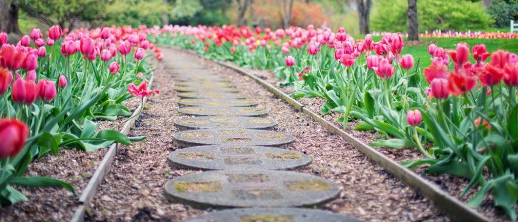 Was ist bei der Suche nach einem Helfer für Gartenarbeiten zu beachten?