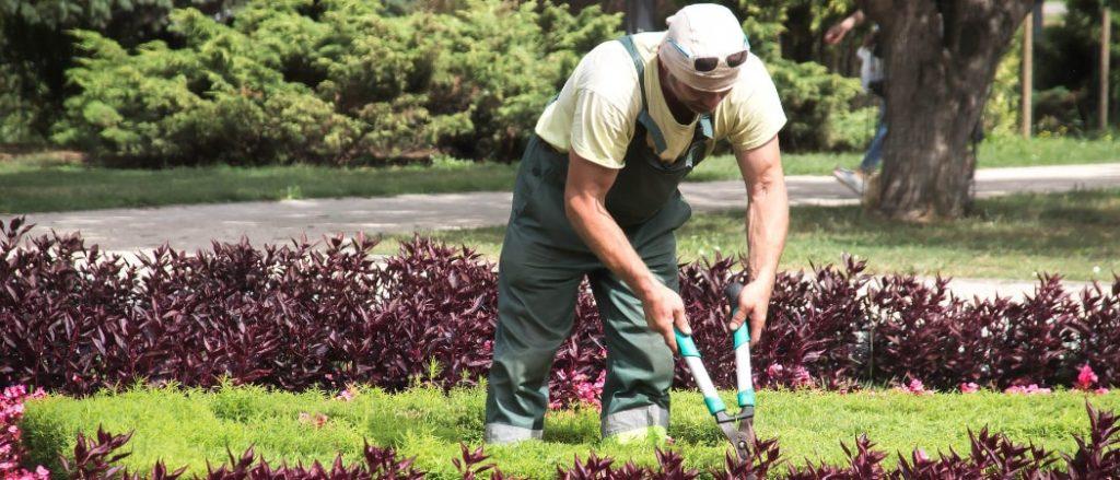 Was kostet ein Gartenhelfer?