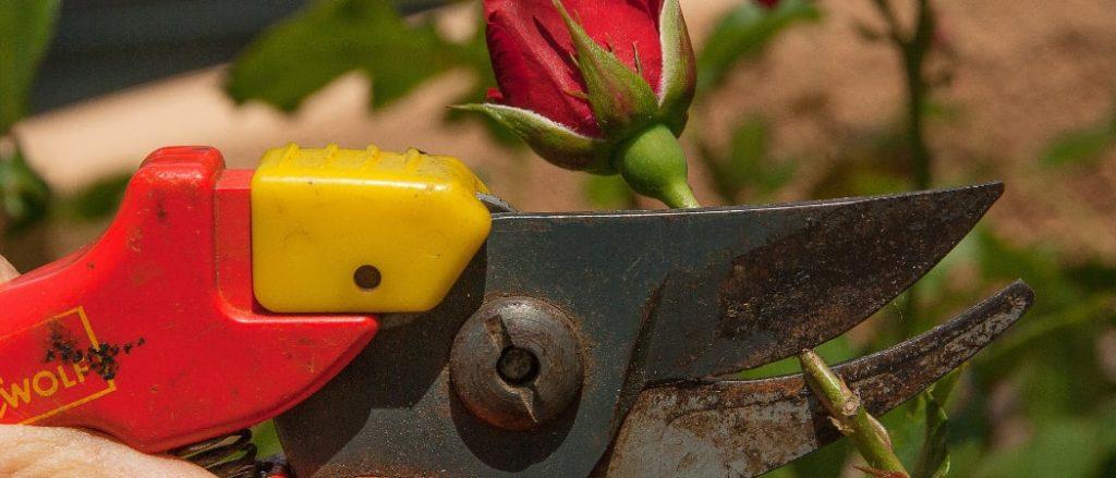 Was verdient ein ungelernter Gartenhelfer?