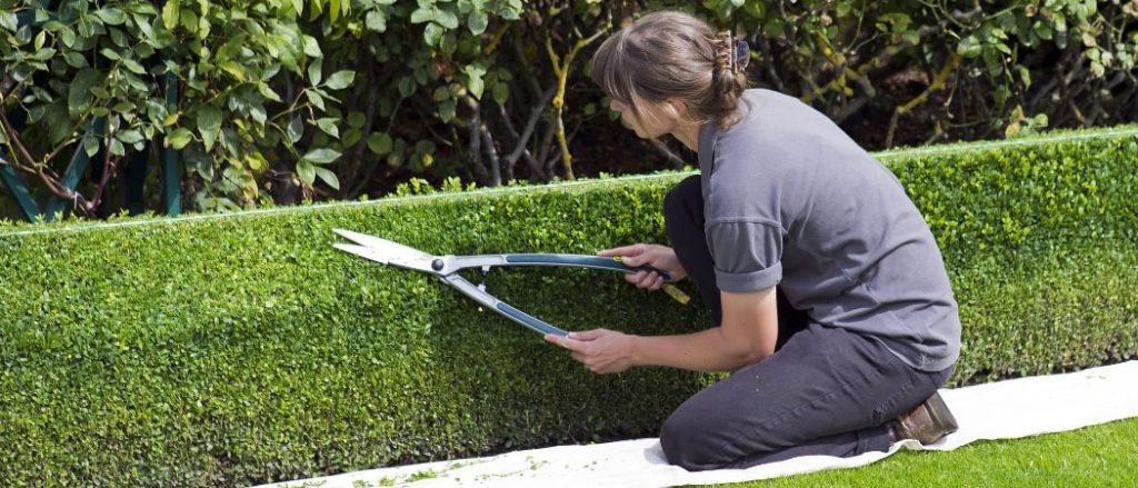 Gartenhilfe Kosten pro Stunde