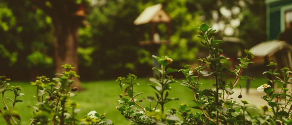 Gartenhilfe für Senioren