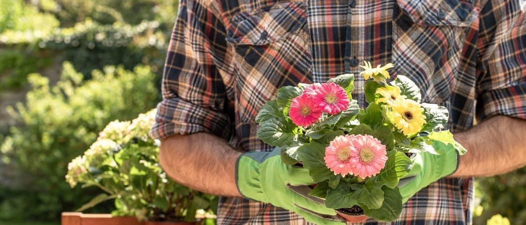 Hilfe bei der Gartenpflege