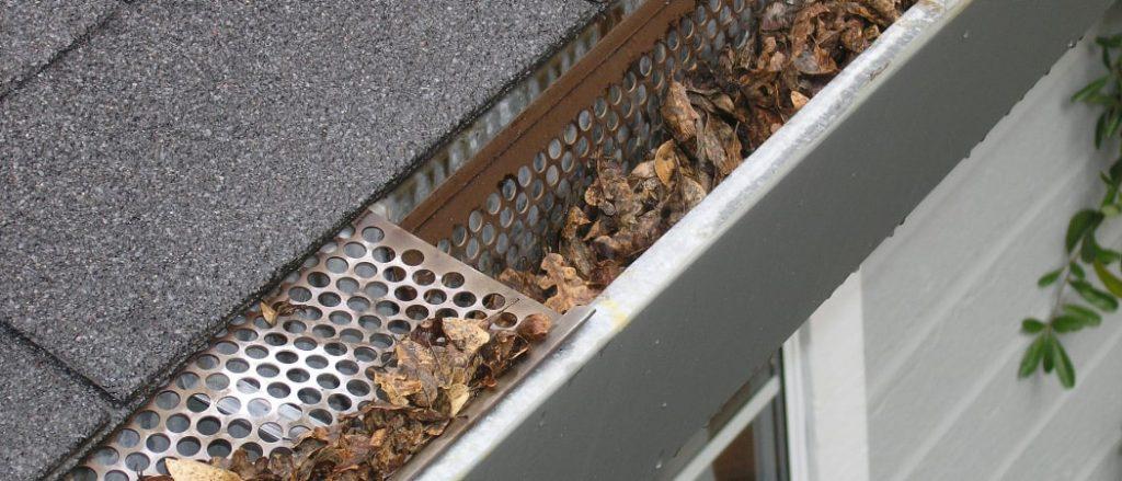 gartenhelfer reinigen dachrinne